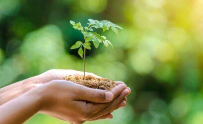 Reducción del impacto medioambiental de la contaminación